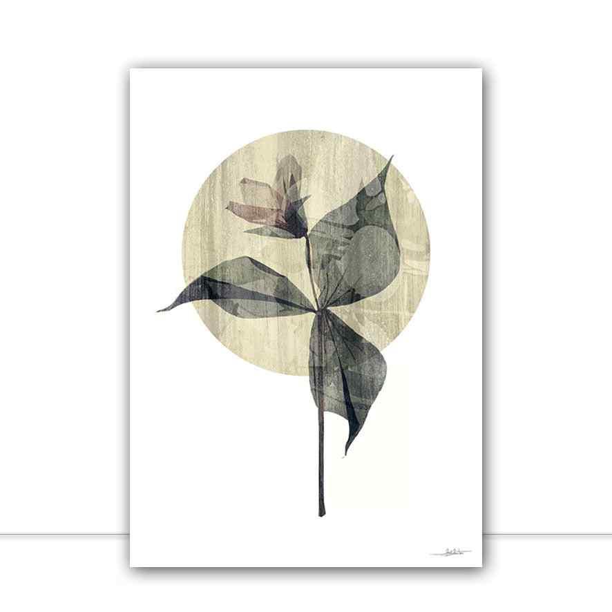 Quadro Flores II por Joel Santos