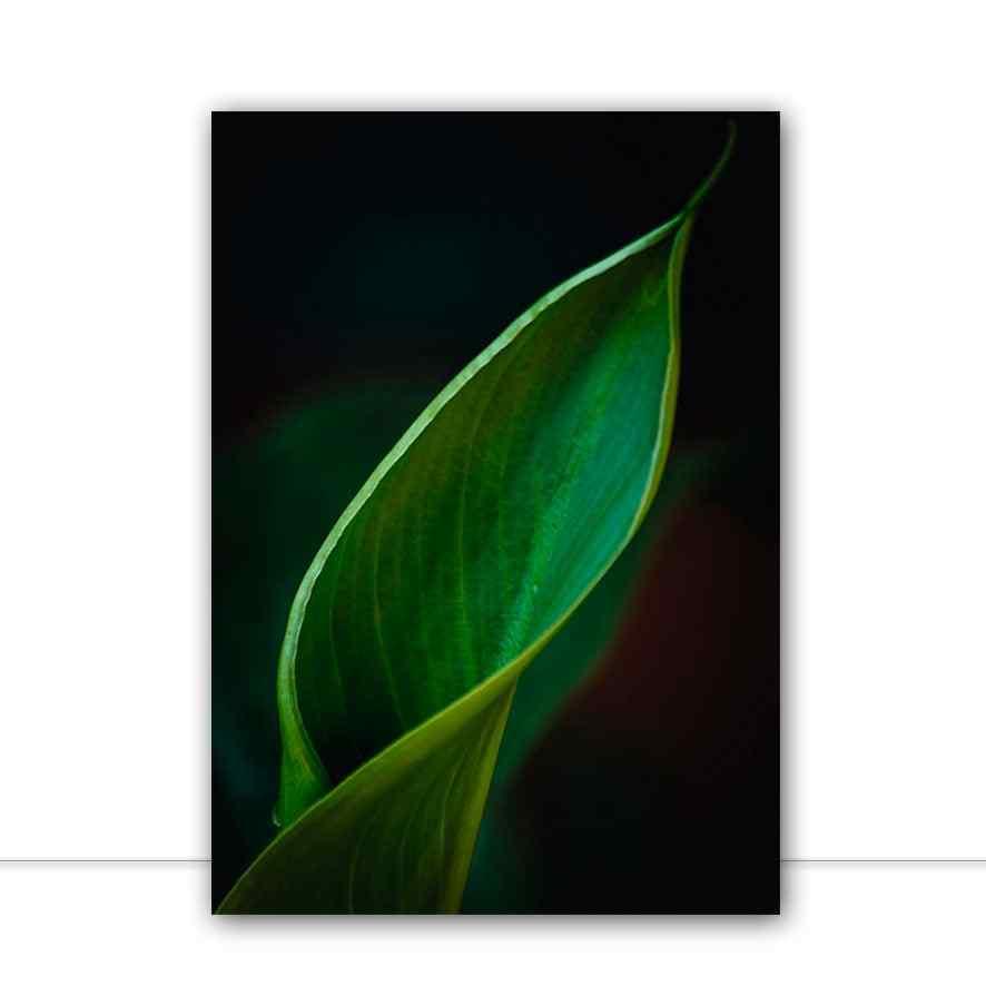 Quadro macro de folha por Edmoraes