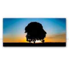 Quadro Árvore ao pôr do sol por Pignata