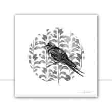 Silk Birds Q III P&B por Joel Santos
