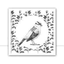 Silk Birds Q II P&B por Joel Santos