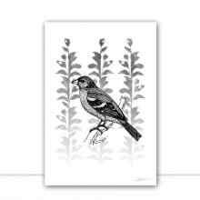 Silk Birds III por Joel Santos