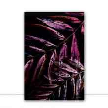 Foliage Purple II por Joel Santos