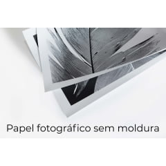 Quadro Patagônia 01 por Marcelo Baldin & Sâmia Munaretti