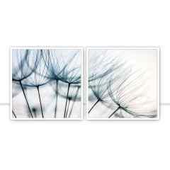 Conjunto de quadros Blue Dandelion Díptico por Juliana Bogo