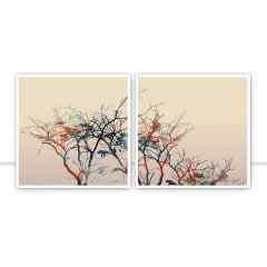 Conjunto de Quadros Backyard I e II por Joel Santos