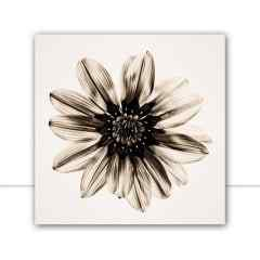 Quadro Multicolor-flower-II-Sepia por Juliana Bogo