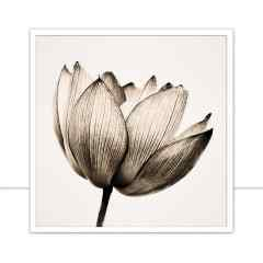 Quadro Multicolor-flower-III-Sepia por Juliana Bogo