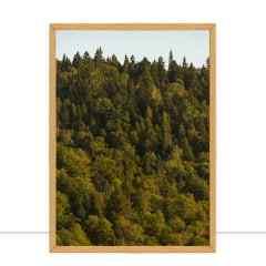 Quadro Oaks and maples por Ramatis