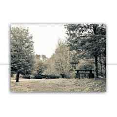 Quadro Parque P&B por Paty Pilonetto