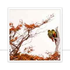 Quadro Pássaros Juntos por Marcelo Baldin & Sâmia Munaretti