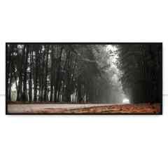 Quadro Pinheiro névoa estrada linda cena por Pignata