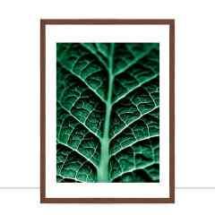 Quadro Plants Green I por Joel Santos
