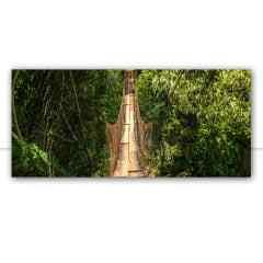 Quadro Ponte de madeira parque nacional brasil por Pignata