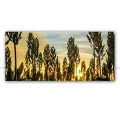 Quadro Pôr do sol de sorgo por Pignata