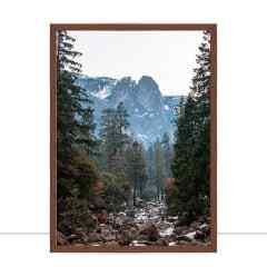 Quadro Redwoods por Mafe Romero