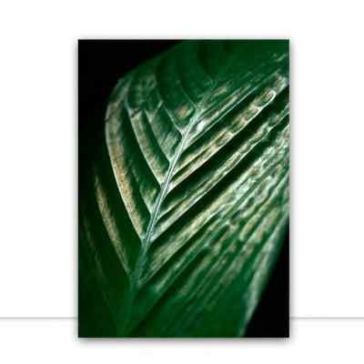 Quadro Verde 2 por Rafael Campezato